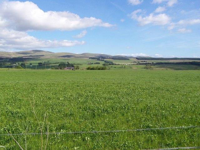 Grassy Field with Ochil Hills Behind