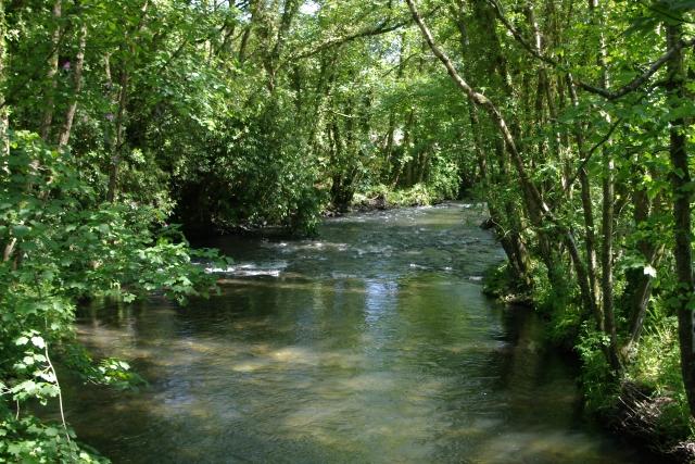 River Lynher at Pillatonmill