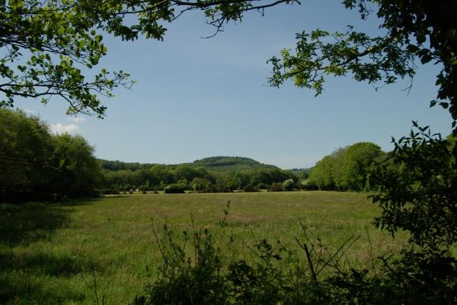 Field near Pillatonmill looking north west