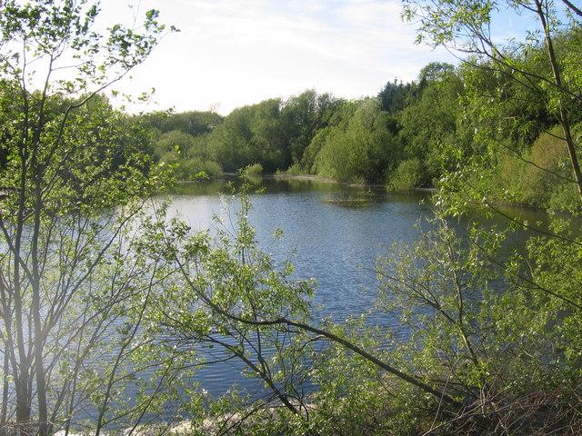 Ogston Reservoir - northwestern tip