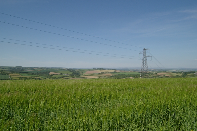 Fields and power lines, near Landrake