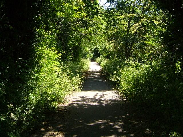 Former railway line at Stockwood