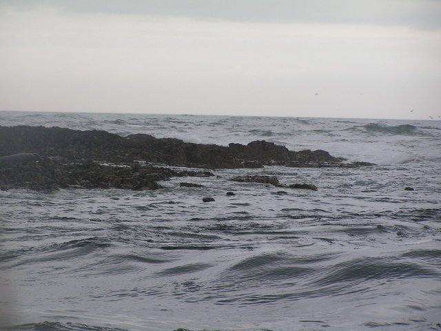 South Eastern end of Longstone Island, Farne Islands