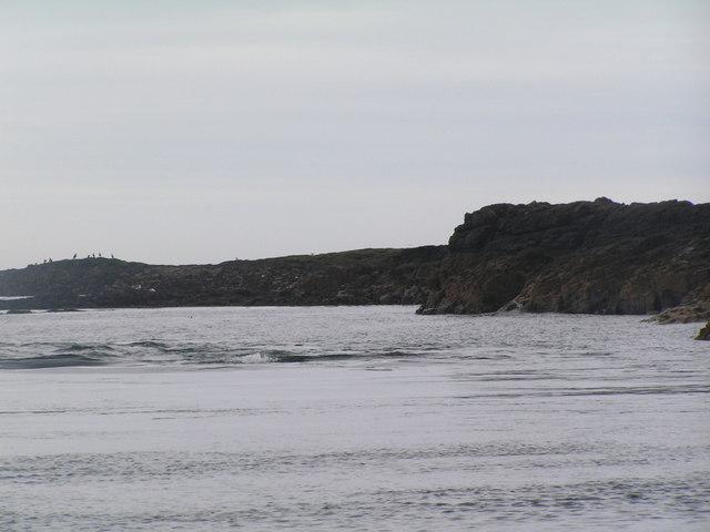 Humber rock, Longstone Island, Farne Islands