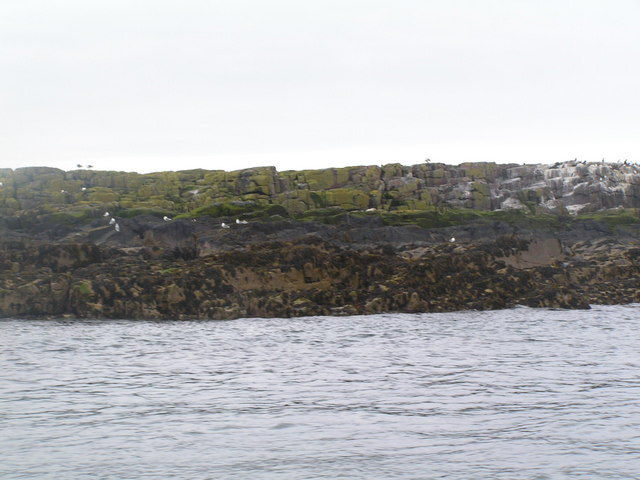 Big Harcar, Farne Islands