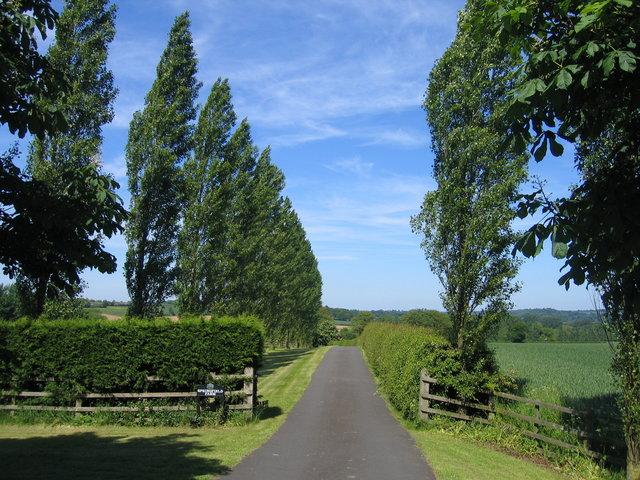 Driveway to Springfield Farm