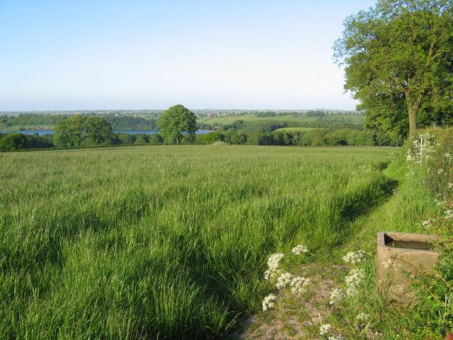 Farmland Looking Towards Ogston Reservoir