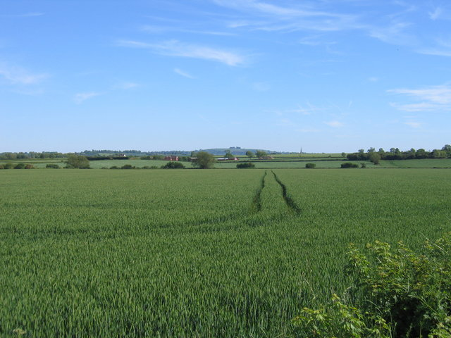 Farmland near Armscote