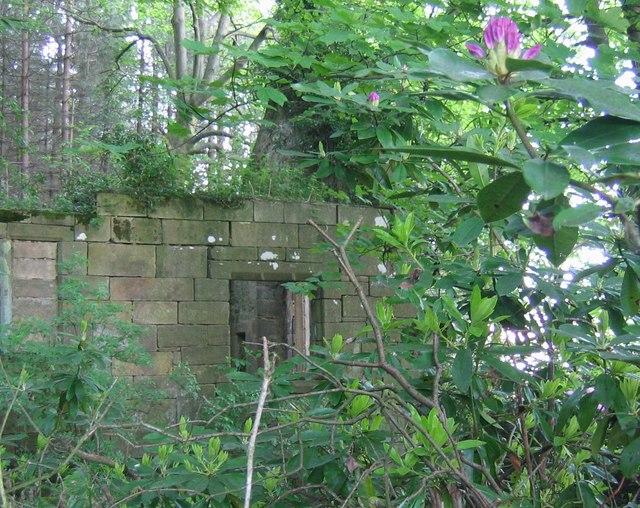 Ruins of Trinity Chapel