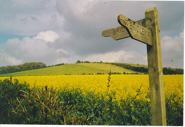 South West of Old Winchester Hill.