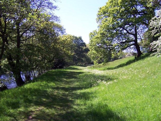River Nidd near Wilsill