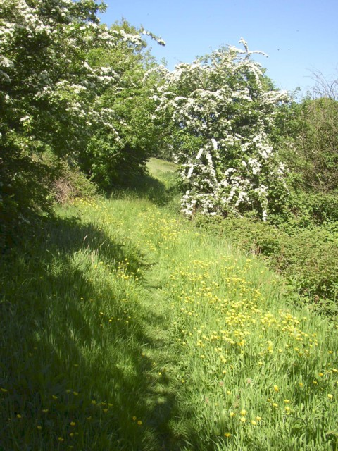 Footpath from Penny Hill to Holme Bottom, Barkisland