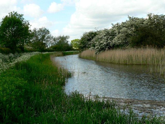 Pocklington Canal at Coates Lock