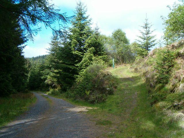 Loch Avich walk