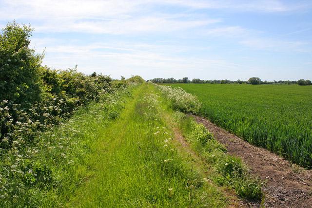 Farm track, Casthorpe, Lincolnshire