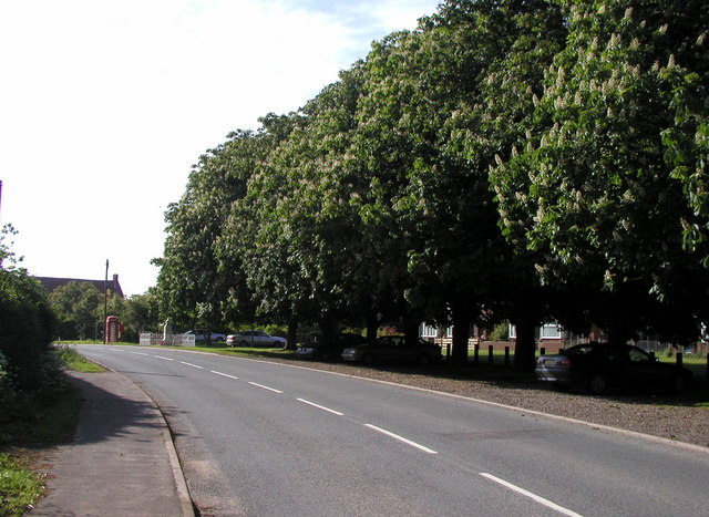 The road into Welwick