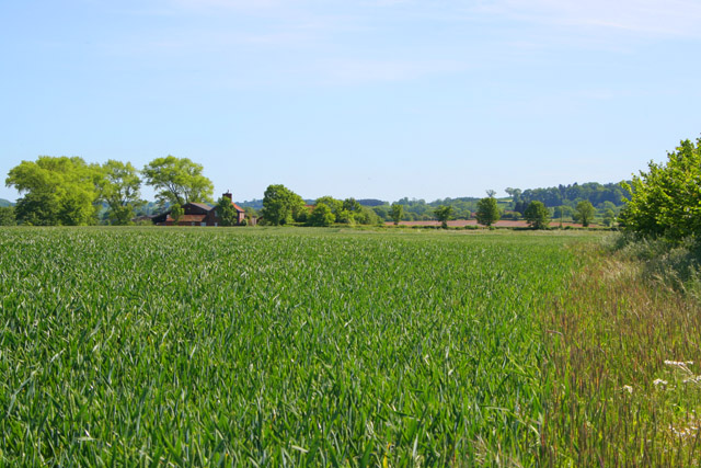 Farmland near Sedgebrook, Lincolnshire