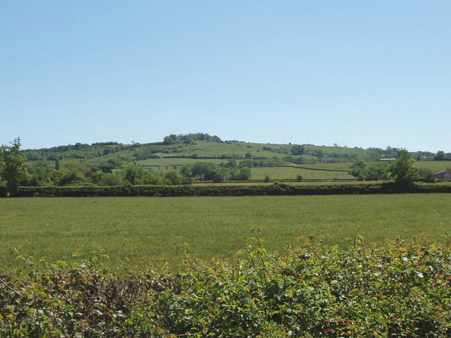 Fields at Piddington
