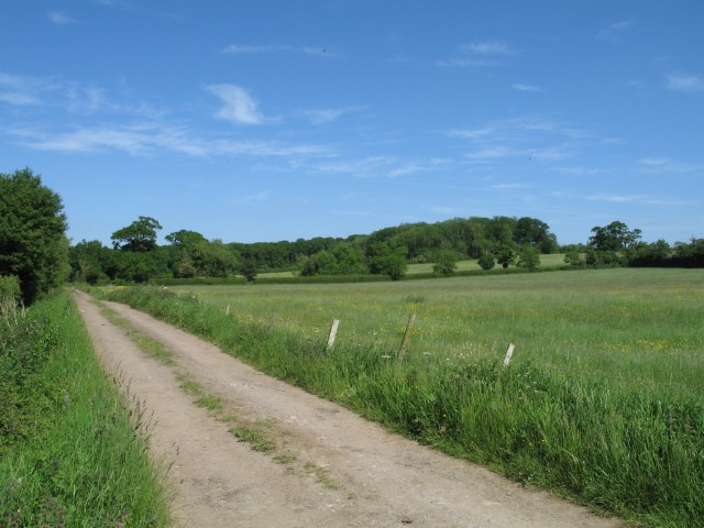 Byway and open fields