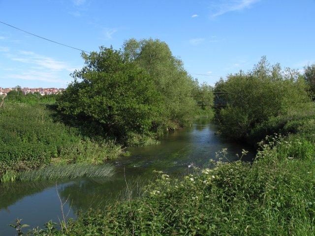 River Avon south of Chippenham
