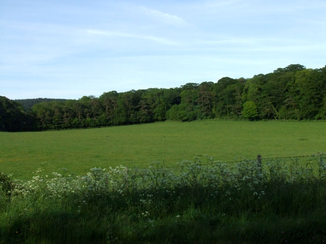 Field as seen from the A5025