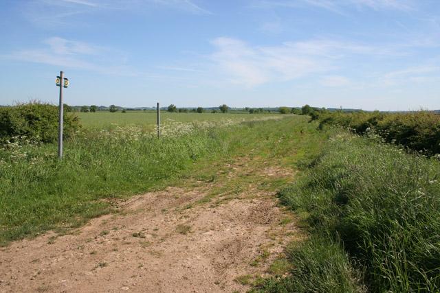 The Viking Way near Allington