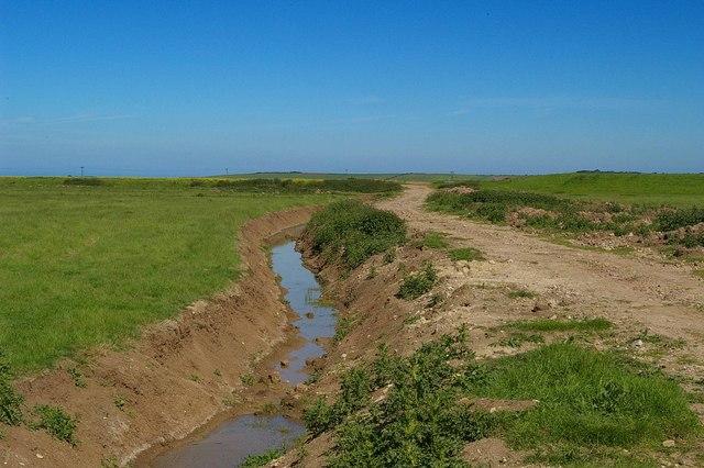 Footpath and fresh cut ditch