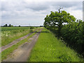TL3766 : Utton's Drove, Swavesey, Cambs by Rodney Burton