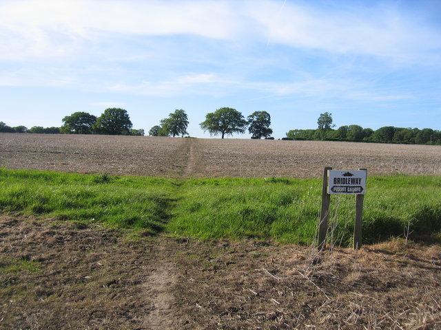 Public bridleway and private gallops