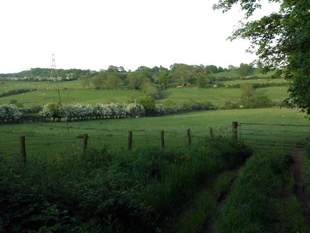 Fields beside the B5110