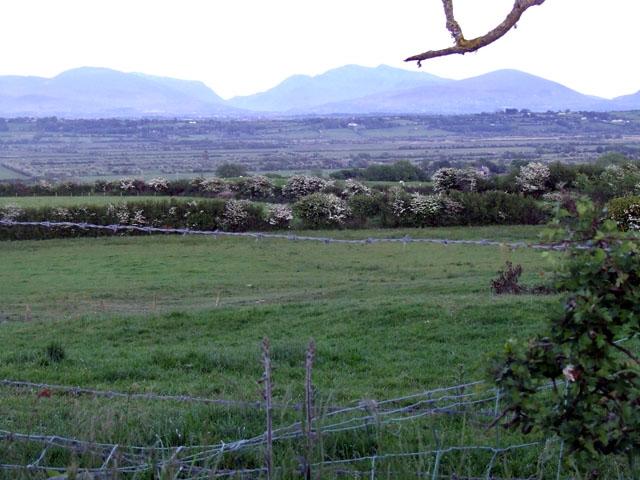 Field at Llangristiolus
