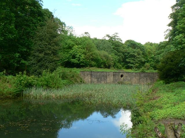 Avenue Pond, Temple Newsam