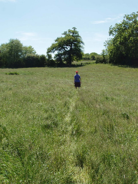 Footpath through long grass, Piddington