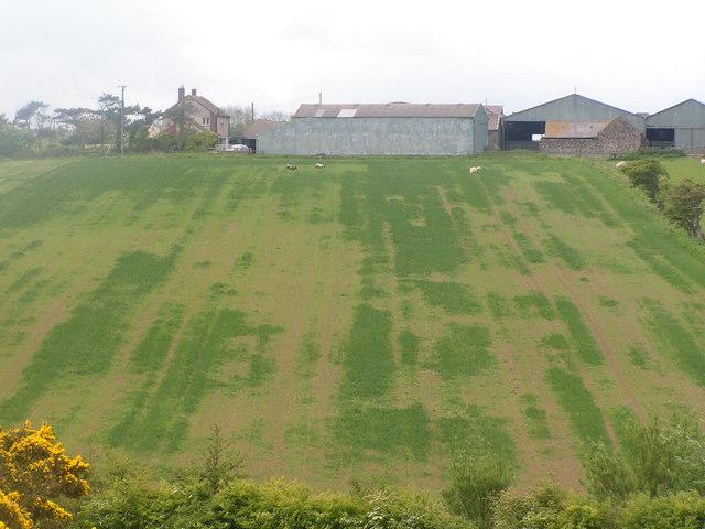 Dunstan Square & field