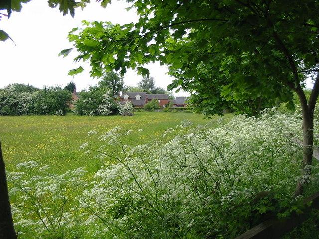 Corner Farm