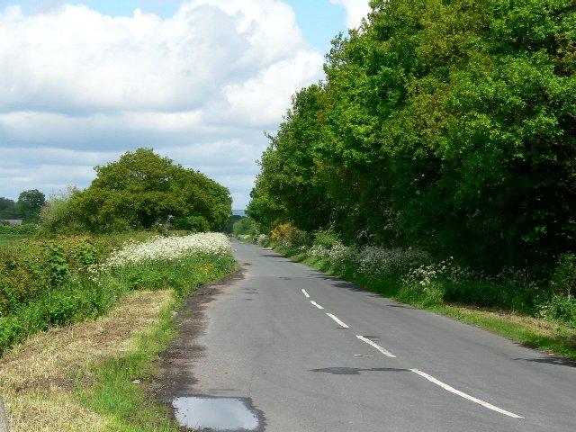 Kidd Lane