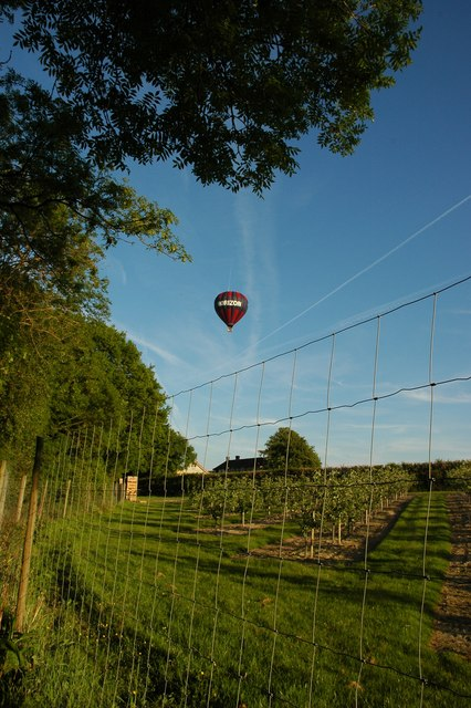 Balloon over SU7531 and the orchard in this grid.