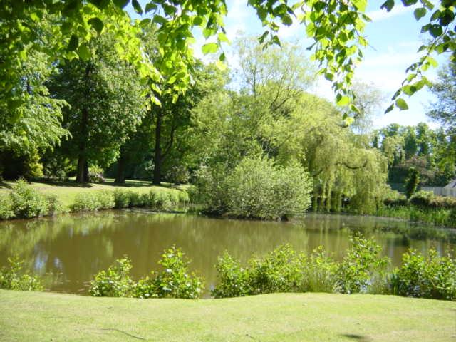 Pond at Inglewood House