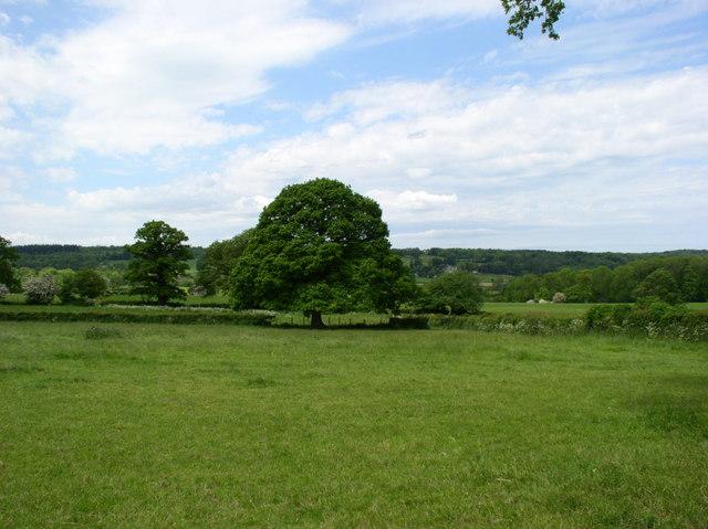 Llanbenwch farmland