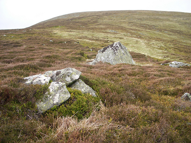 Braes of Ben Tirran