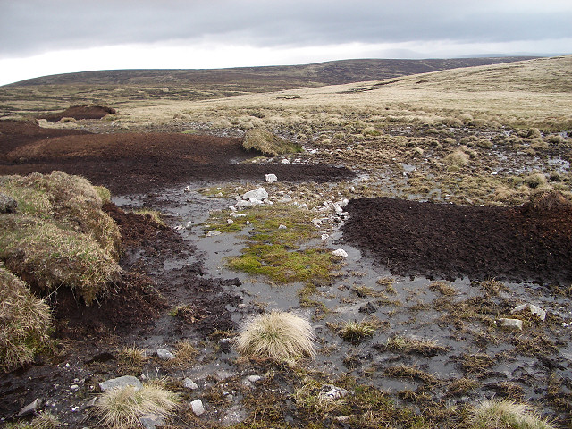 Peat hags and bog