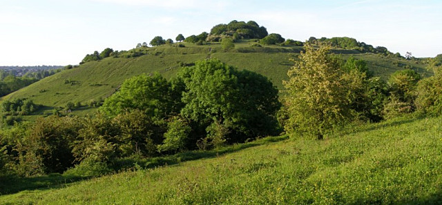 St Catherines Hill from Twyford Down