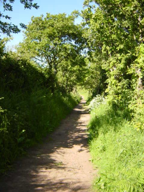 Cuckoo Lane, Little Neston