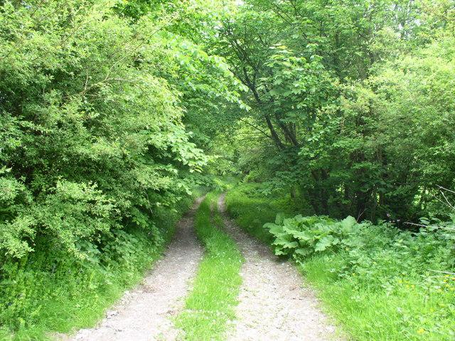 Track to Pentre Farm, near Bryneglwys