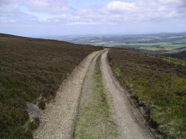 Track near Lammer Law
