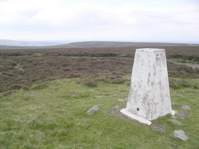 Meikle Says Law trig point