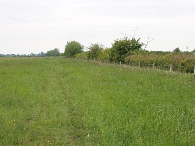 Track across Otmoor