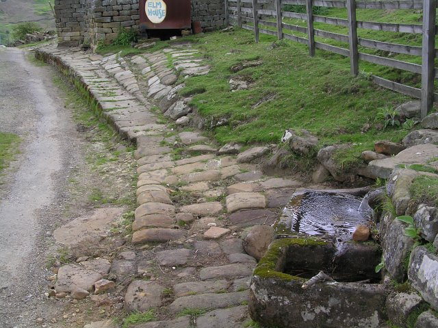 Stone trough and Spring - Elm House