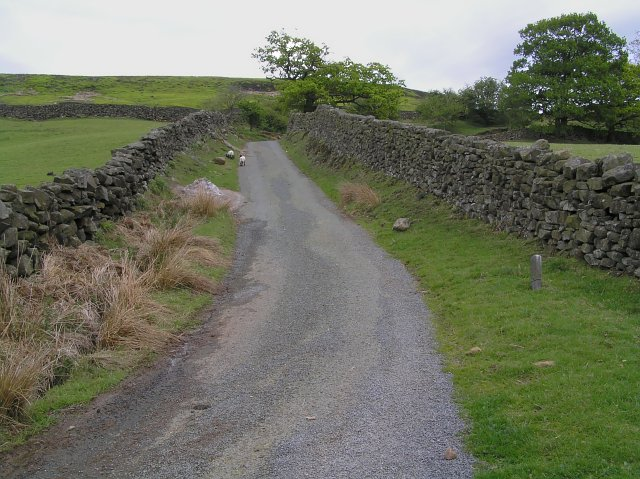 Steep Bank between Elm House and Ash House