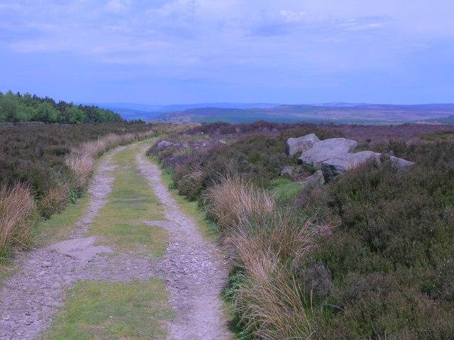 Track on Gibbet Moor